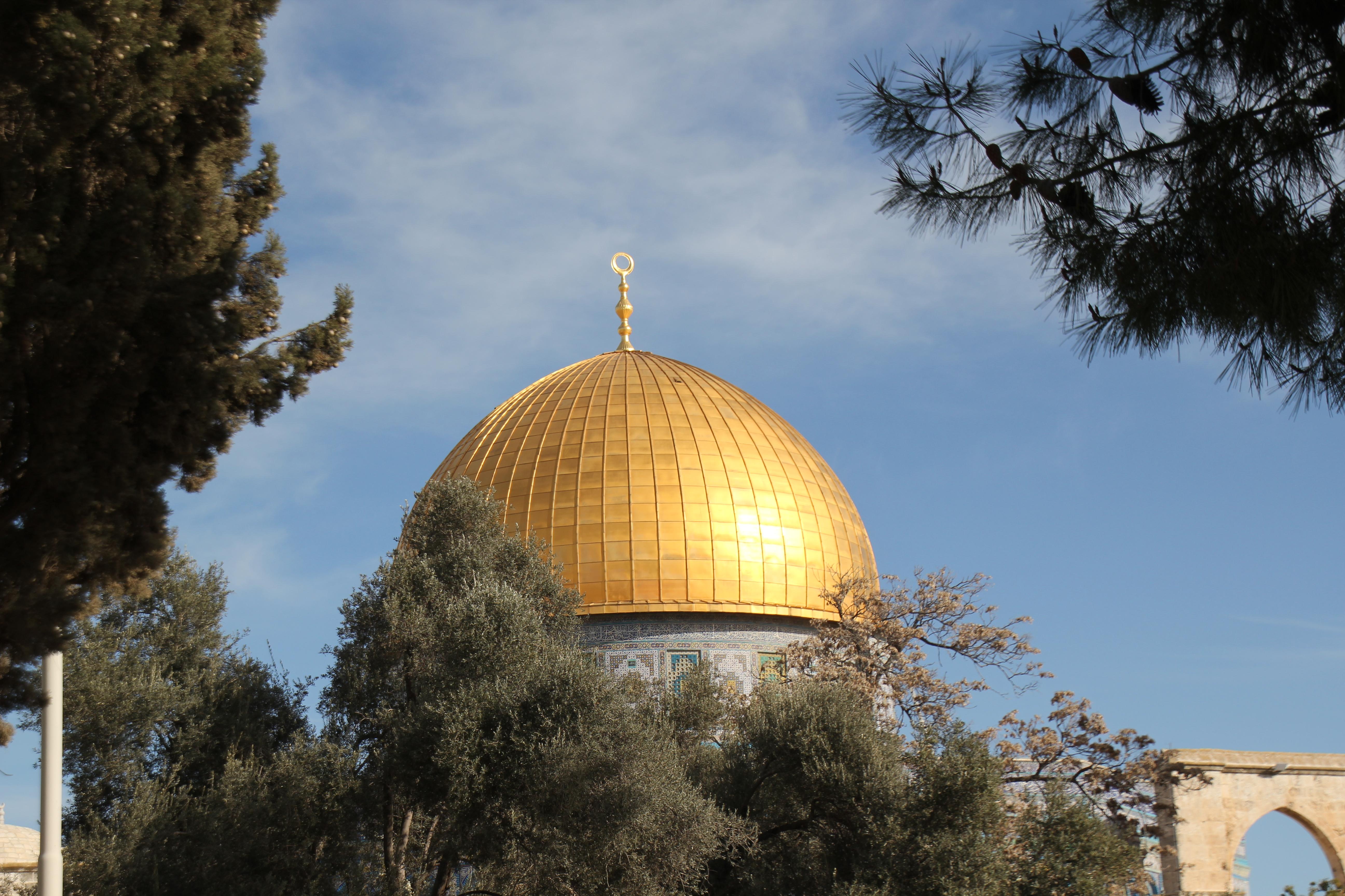 Shoresh study tours israel